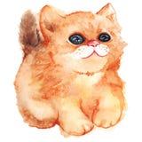 Кот имбиря акварели Стоковое Изображение