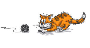 Кот имбиря Стоковые Изображения