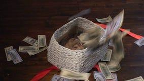 Кот и деньги в присутствующей корзине видеоматериал