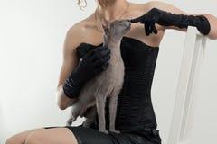 Кот и женщина Стоковые Изображения RF