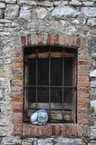Кот и окна Стоковое Изображение