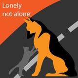 Кот и собака совместно на дороге Стоковые Фотографии RF
