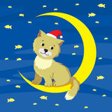 Кот и луна Стоковые Изображения