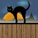 Кот на загородке Стоковое Изображение RF