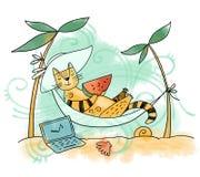 Кот на каникулах Стоковые Изображения