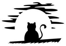 Кот на крыше Стоковые Изображения