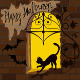 Кот на окне, хеллоуин Стоковая Фотография