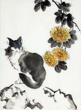 Кот на цветке камня и хризантемы бесплатная иллюстрация