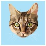 Кот низко поли Стоковая Фотография