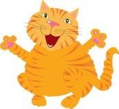 Кот петь имбиря Стоковая Фотография