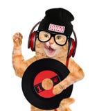 Кот показателя винила наушников музыки Стоковые Фото