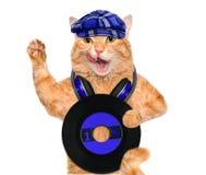 Кот показателя винила наушников музыки Стоковое Фото