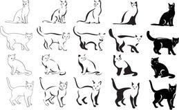 Кот, портрет, графическое изображение, черное Стоковые Изображения