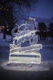 Кот посвеченный от льда Стоковые Изображения RF