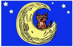 Кот ситца на луне Стоковые Изображения