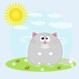 Кот сидя в луге греясь в солнце Стоковые Фотографии RF