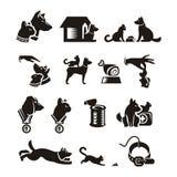 Кот & собака Иллюстрация штока