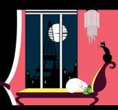 Кот спать в розовой комнате стоковое фото