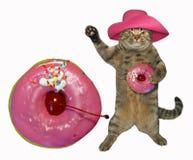 Кот с большим розовым донутом стоковые фотографии rf
