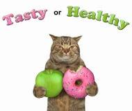 Кот с зеленым яблоком и донутом иллюстрация вектора