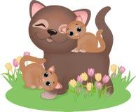 Кот с котятами Стоковое Изображение
