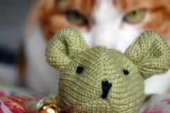 Кот с мышью игрушки Стоковые Фото