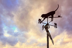 Кот с лопастью погоды Mouses Стоковые Фото