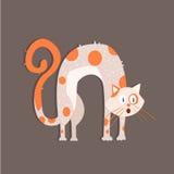 Кот с сдобренный назад отображает Стоковая Фотография