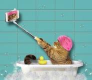 Кот с телефоном в ванной комнате 2 стоковые фотографии rf
