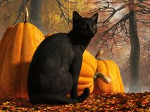 Кот хеллоуина иллюстрация вектора