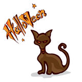 Кот хеллоуина Стоковая Фотография RF