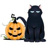 Кот хеллоуин Стоковые Изображения