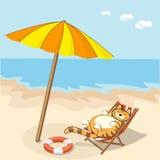 Кот шаржа на пляже Стоковые Изображения RF