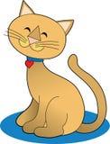 кот довольно Стоковое фото RF