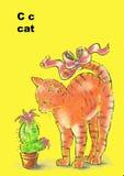 кот c Стоковые Изображения RF