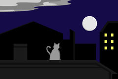 Кот gazing на луне Стоковая Фотография RF