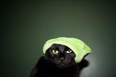 Кот Grinch Стоковые Изображения