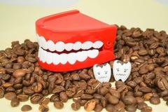 Кофеин от выпивая кофе водит для того чтобы досаждать и распасться к человеческим зубам стоковые фотографии rf