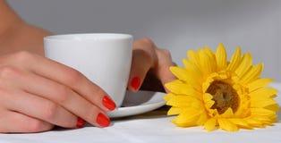 кофейная чашка вручает женщину Стоковые Фотографии RF