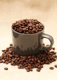 Кофейная чашка заполненная с фасолями на мешковине 2 Стоковая Фотография RF