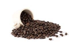 Кофейная чашка и кофейные зерна, на белой предпосылке, хранят Стоковые Фото