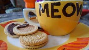 Кофейная чашка кота с печеньями шоколада сандвича Стоковое Изображение RF