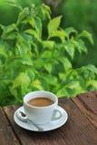 Кофейная чашка на деревянной таблице с зеленой предпосылкой стоковая фотография