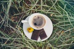 Кофейная чашка на замороженной траве Стоковое Изображение
