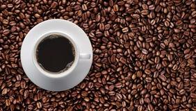 Кофейная чашка на кофейном зерне жаркого с космосом экземпляра текста Стоковая Фотография RF
