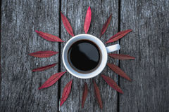Кофейная чашка на положении квартиры предпосылки листьев Стоковые Изображения