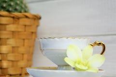 Кофейная чашка с эспрессо, орхидеей на sauser и кактусом в корзине на деревянной покрашенной предпосылке Стоковые Фотографии RF