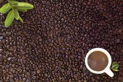 кофейная чашка фасолей предпосылки Стоковые Изображения RF