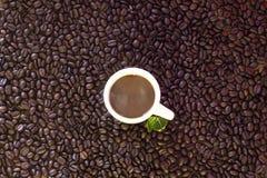 кофейная чашка фасолей предпосылки Стоковое Изображение