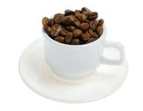 кофейная чашка фасолей Стоковая Фотография